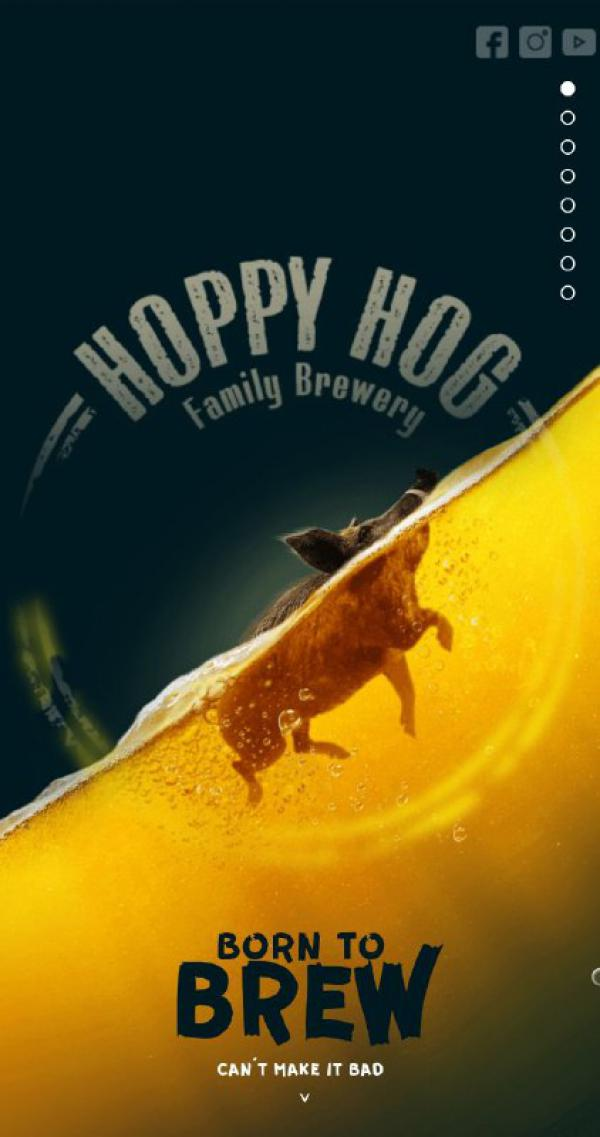 Hoppy Hog Family Brewery example picture